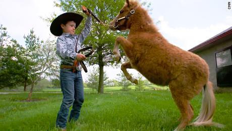 Say hi to Kentucky Chrome, the Shetland pony