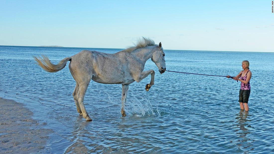 Bazaruto Archipelago where horses play in the surf