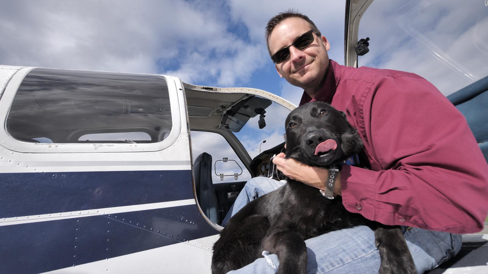 Dog lover flies paw sengers to safety