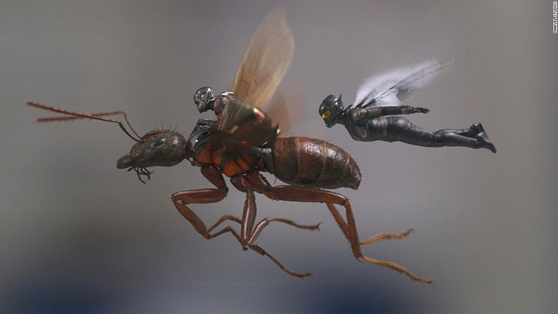 "<strong>""Ant-man and the Wasp""</strong>: Marvel's smallest superhero is back, and this time he has a partner. Paul Rudd returns in the sequel to 2015's ""Ant-man,"" joined by Evangeline Lilly as the Wasp. In this film, Rudd's Scott Lang/Ant-man seeks to balance fatherhood and being a superhero. It buzzes into theaters <strong>July 6</strong>."