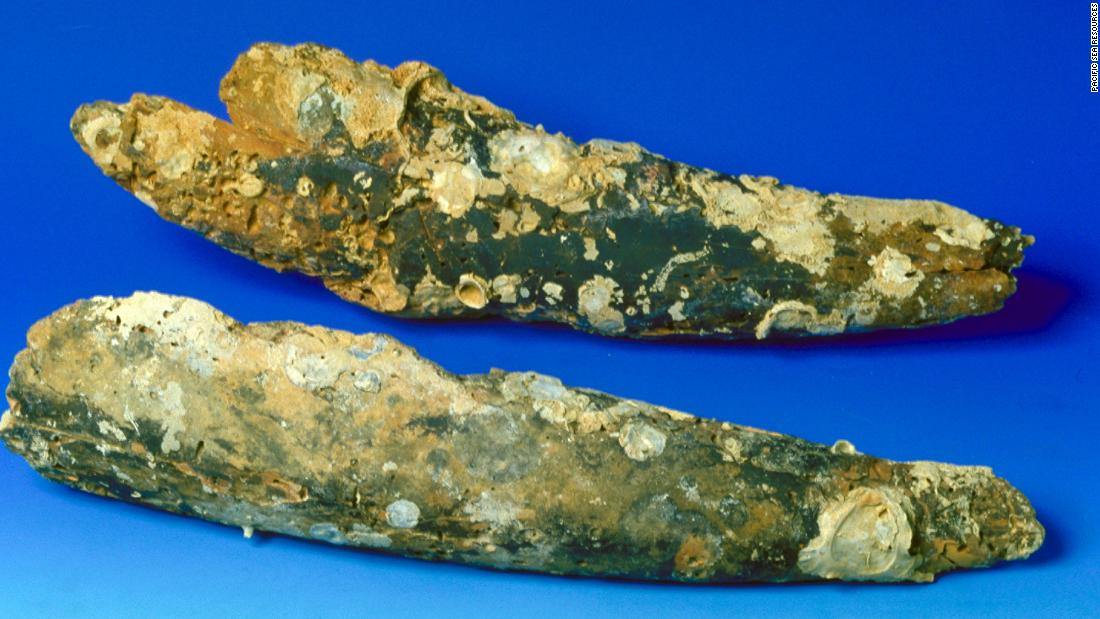 These are just two of 16 pieces of elephant tusk recovered from the wreck. The damage from being underwater for so many centuries is obvious. During the Song dynasty (A.D. 960-1279) in China, elephant tusks were used in medicines and in the decorative arts.