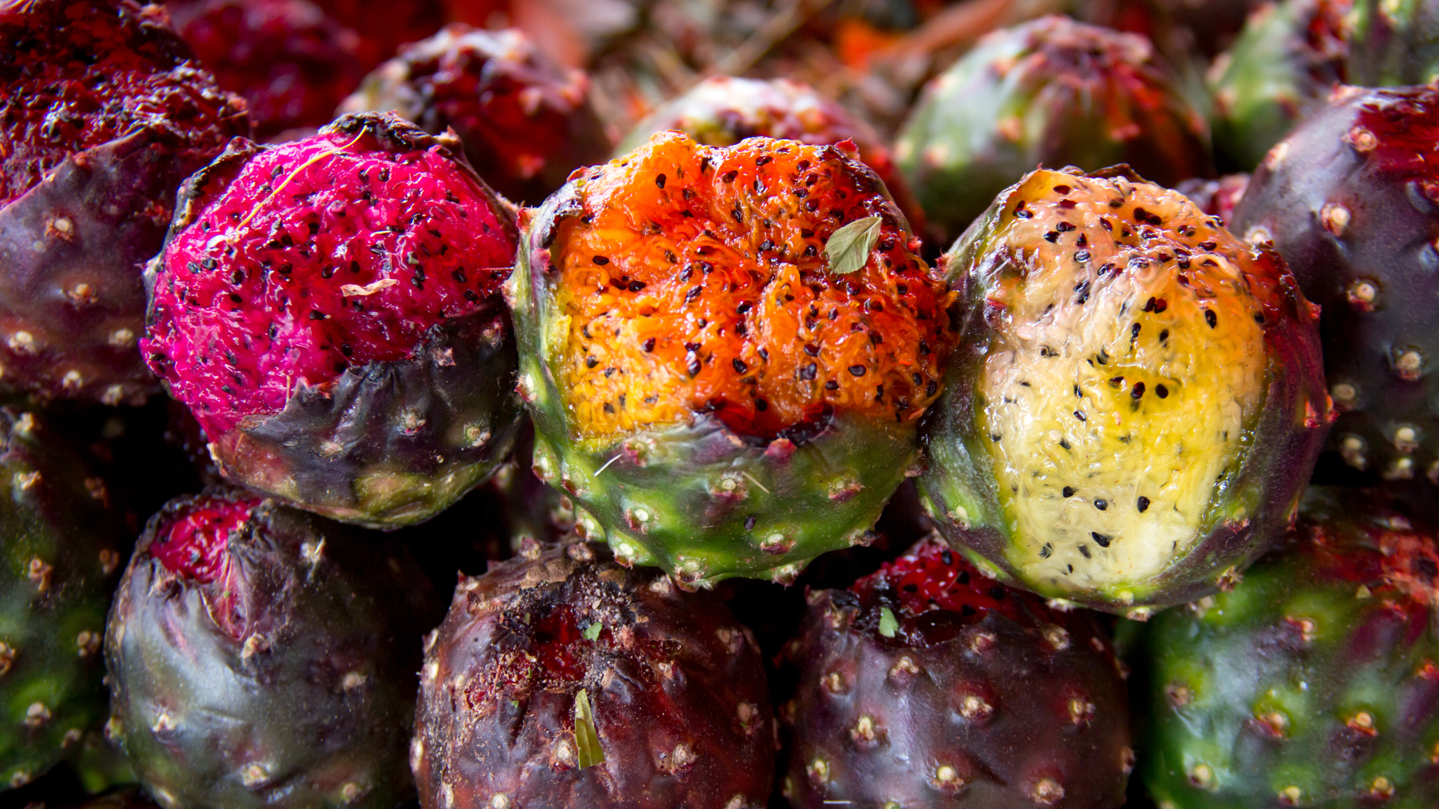 Pitayas The Mexican Fruit That Beckons Visitors Cnn Travel