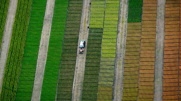 Mission, Canada: An aerial view of a plant nursery near Mission, British Columbia. About 80 kilometers southeast of Vancouver, the town