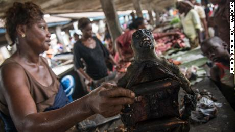 A monkey's head is on display with other cuts of bush meat at a market in Mbandaka.