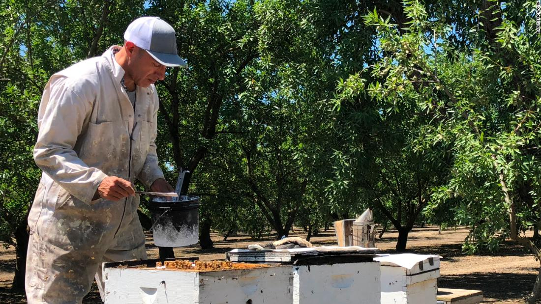 A beekeeper and a venture capitalist are among candidates facing off to turn thi...