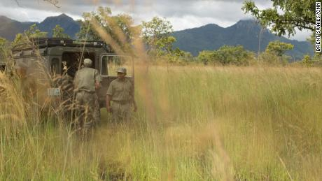 Rangers on patrol in Niassa Reserve.