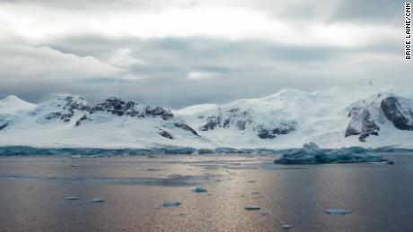 The Antarctic ice melt has accelerated by 280% in the last 4 decades.