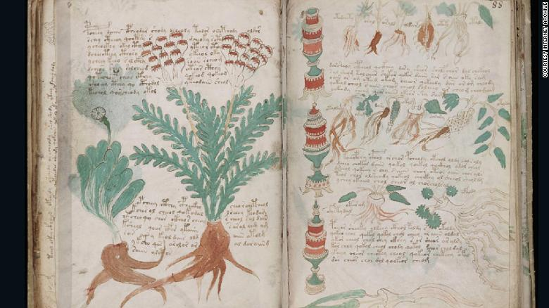This medieval manuscript has provoked speculation since it turned up in a bookshop a century ago. Written in an unreadable script, it includes illustrations of plants, women and astrological symbols.<br />