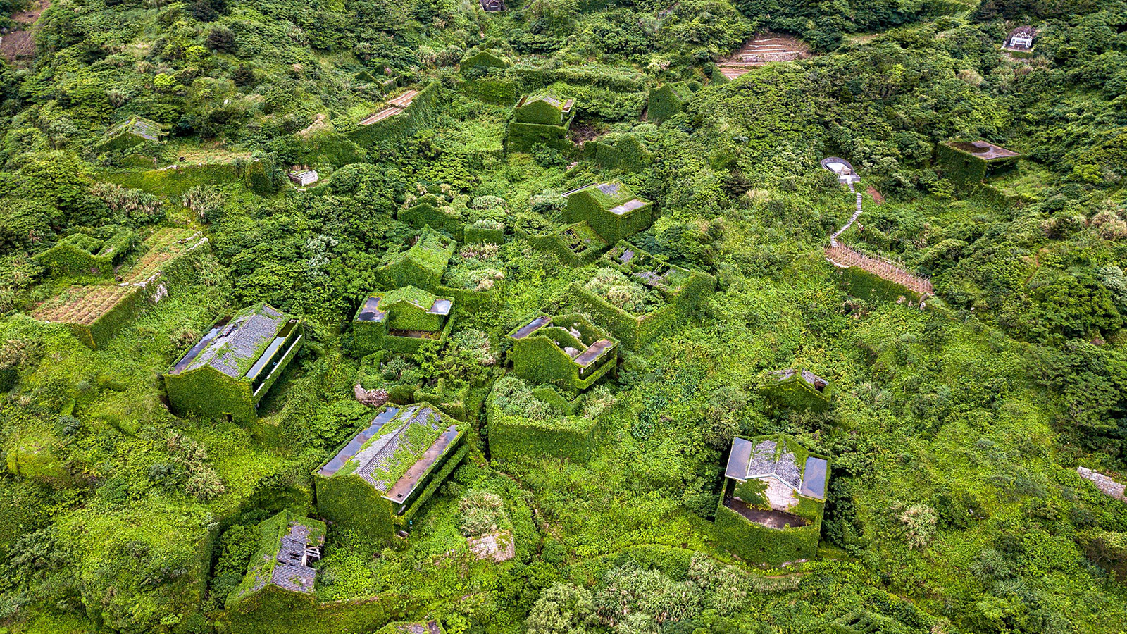 Houtouwan, China's ghost village swallowed by nature | CNN Travel