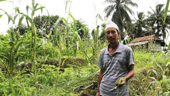 Some farmers teach the use of medicinal plants to the next generation. Here a farmer holds the medicinal plant ghodtapre, traditionally used to treat skin irritation.