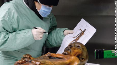 Otzi the Iceman is an incredibly well-preserved glacier mummy.