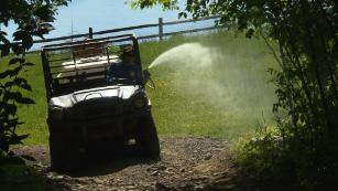 Summer campers face deadly ticks and mosquitoes