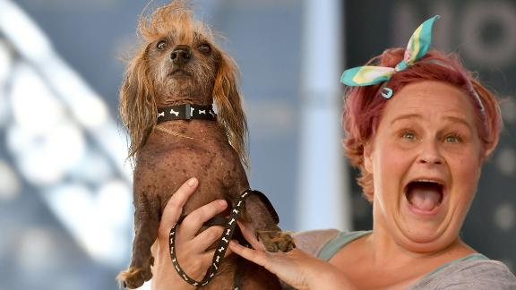 Heather Wilson holds up her dog, Himisaboo, a Chinese crested-Dachshund mix, during the World's Ugliest Dog Contest.