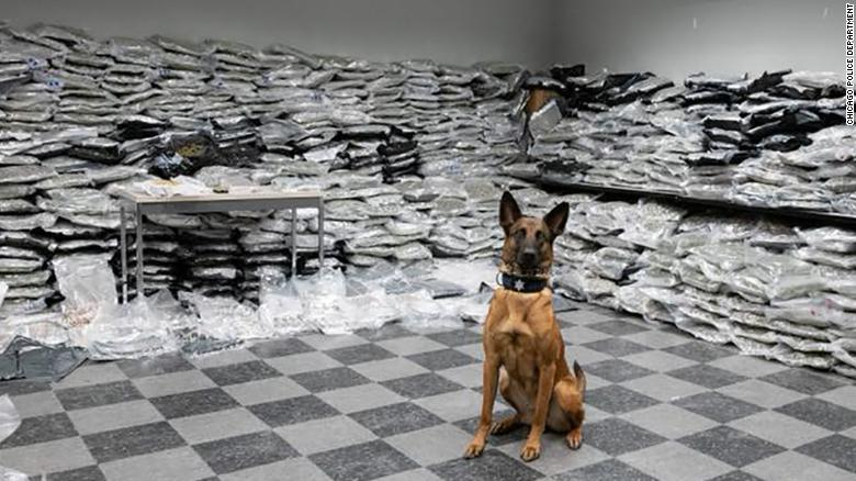 Chicago police shared this image on Facebook showing the K-9 surrounded by the seized product.
