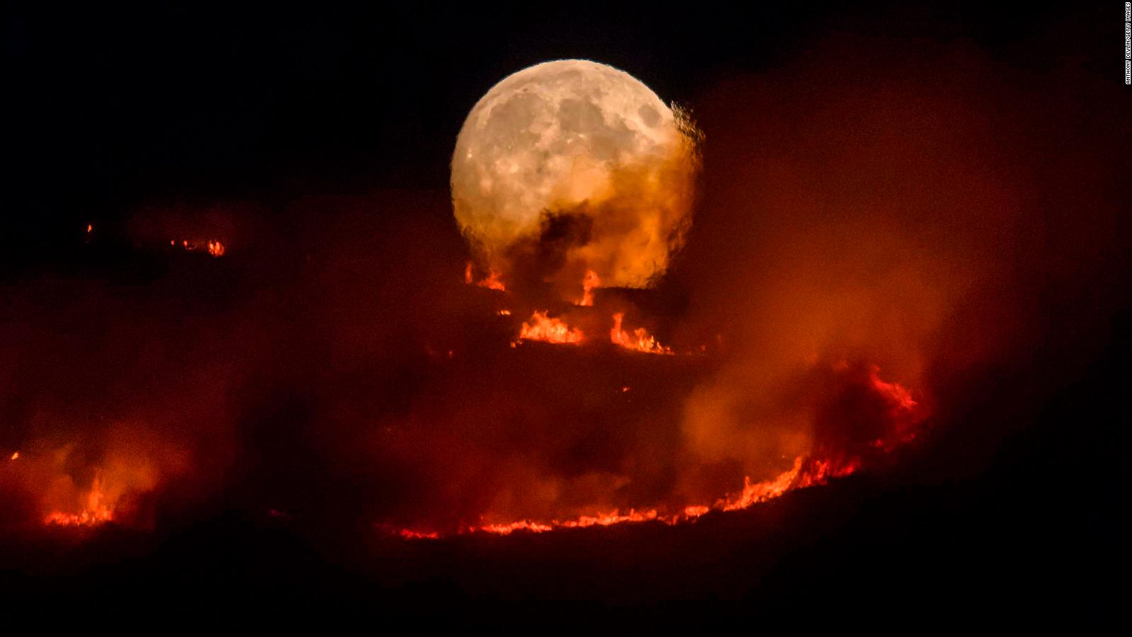 Large forest fires in Manchester 44