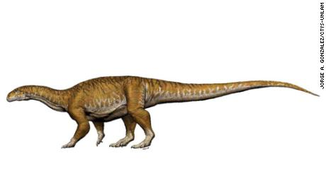Newly discovered fossils indicate that giant dinosaurs evolved millions of years earlier than scientists thought