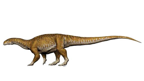 The Ingentia prima lived during the Late Triassic period and weighed about 10 tons.