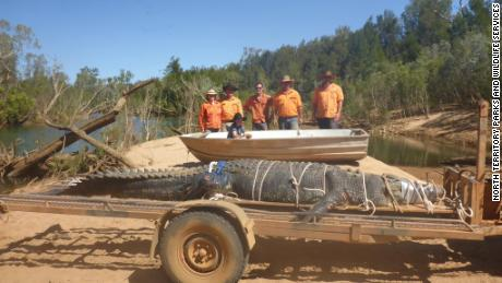 Wildlife rangers in the North Territory captured a mammoth crocodile Monday.