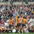 australia 1991 rugby world cup