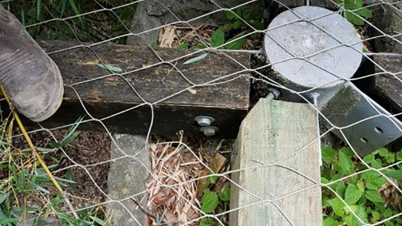 A hole in the enclosure where the jaguar is believed to have escaped.