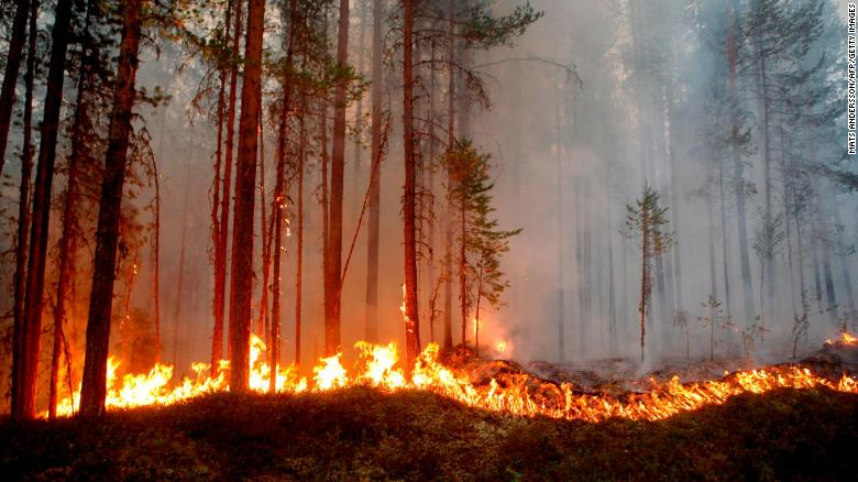 Wildfires and deadly heat waves across continents