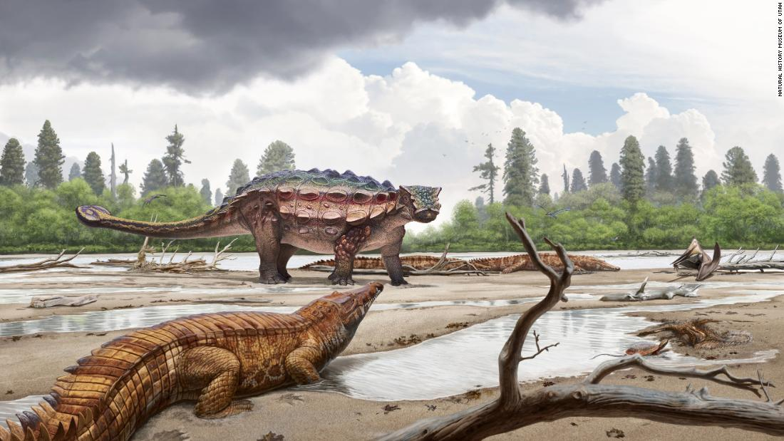 The fossil of the newly discovered armored dinosaur Akainacephalus johnsoni was found in southern Utah.