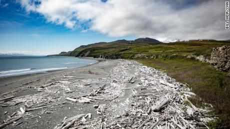 Amakdedori Beach on Alaska's Kenai Peninsula, where a mining company proposes a new port.