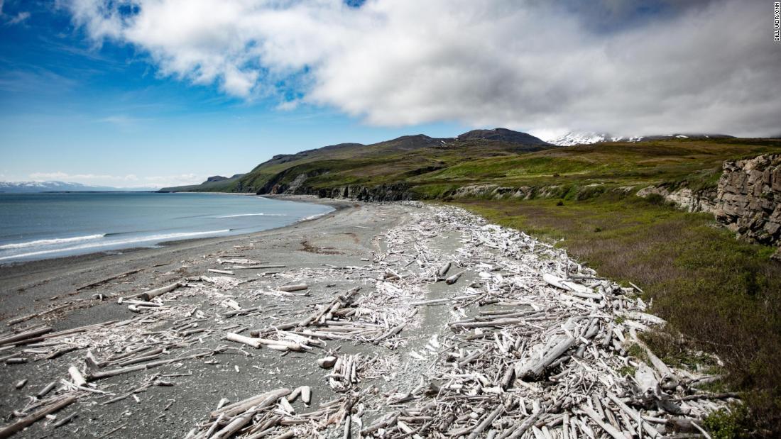 Amakdedori Beach on Alaska's Kenai Peninsula, where a mining company proposes a new port.