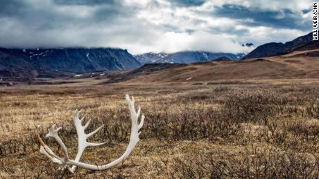 Alaskans split over cashing in on oil