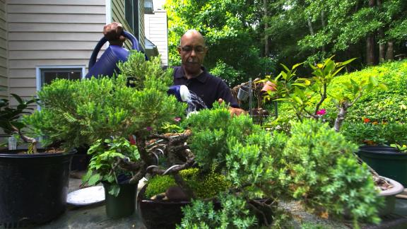 Tony Wright tends his garden every day, inspired by his own horticultural therapy.