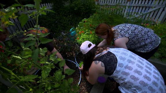 A group of current and former Skyland Trail clients plant seeds as part of the horticultural therapy program.