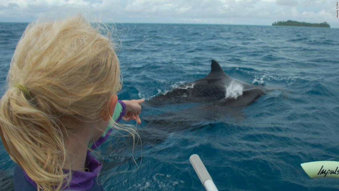 We are living on a field trip': A family reflects on sailing around