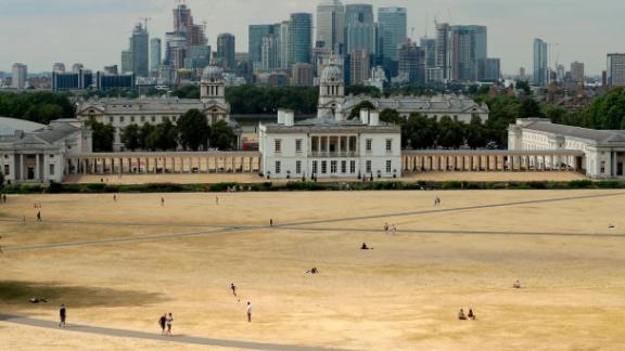 A view shows parched grass in London's Greenwich Park on Tuesday, July 24.