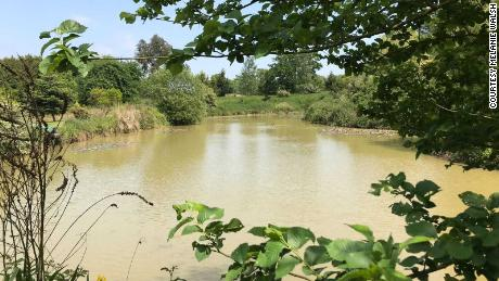 A half acre lake stocked with over 2,000 fish sits on the home's backyard.