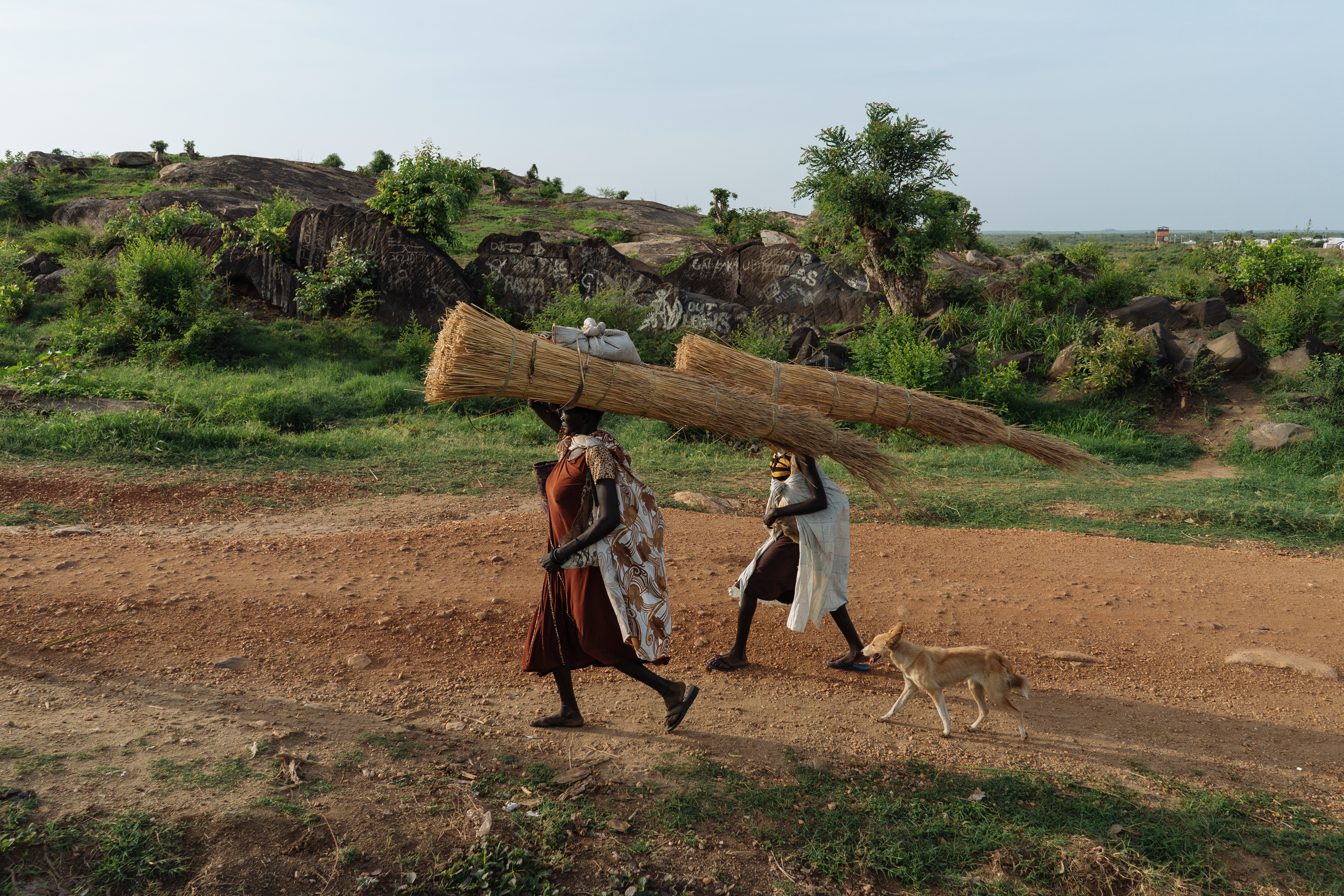 Women return home to the camp after collecting firewood.
