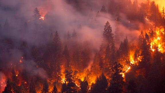 REDDING, CA - JULY 30: Forest burns in the Carr Fire on July 30, 2018 west of Redding, California. Six people have died in the massive fire, which has burned over 100,000 acres and forced thousands to evacuate since it began on July 23. (Photo by Terray Sylvester/Getty Images)