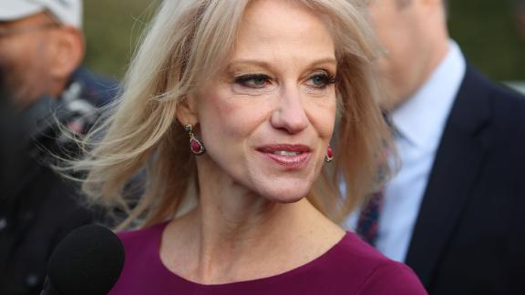 White House Counselor Kellyanne Conway speaks to reporters on the White House driveway after doing a television interview, on April 13, 2018 in Washington, DC.  (Mark Wilson/Getty Images)