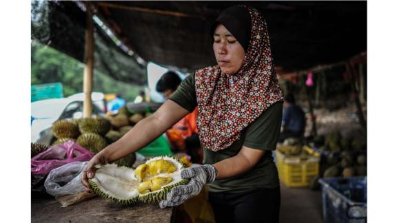"""On the trail: """"(While traveling), I started noticing that there was this kind of obsession on durian, a fixation on durian, more than any other fruit ... People would travel from all over the world just to eat this one kind of fruit,"""" 29-year-old Gasik tells CNN Travel."""