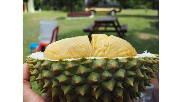 Durian hunter: Best known for their pungent aroma and starchy, custard-like texture, durians aren't for everyone.