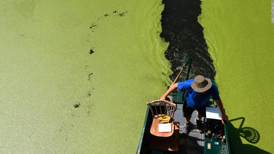 "A boat passes along the Regent's Canal in London on Monday, August 6. The canal has turned green because a heat wave has caused duckweed to spread rapidly, <a href=""https://www.express.co.uk/news/uk/993584/uk-heatwave-london-canals-green-uk-weather-forecast"" target=""_blank"">according to the Daily Express.</a>"