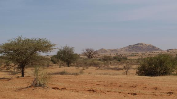 Sudanese agricultural drone startup Massive Dynamics aims to use drones to plant seeds of Acacia trees from the sky to combat desertification.
