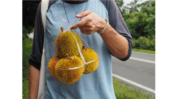 """Durian diaries: Based in Penang, Malaysia, she also leads durian tours and has penned two guide books, including recently published """"The Durian Tourist's Guide to Penang""""."""