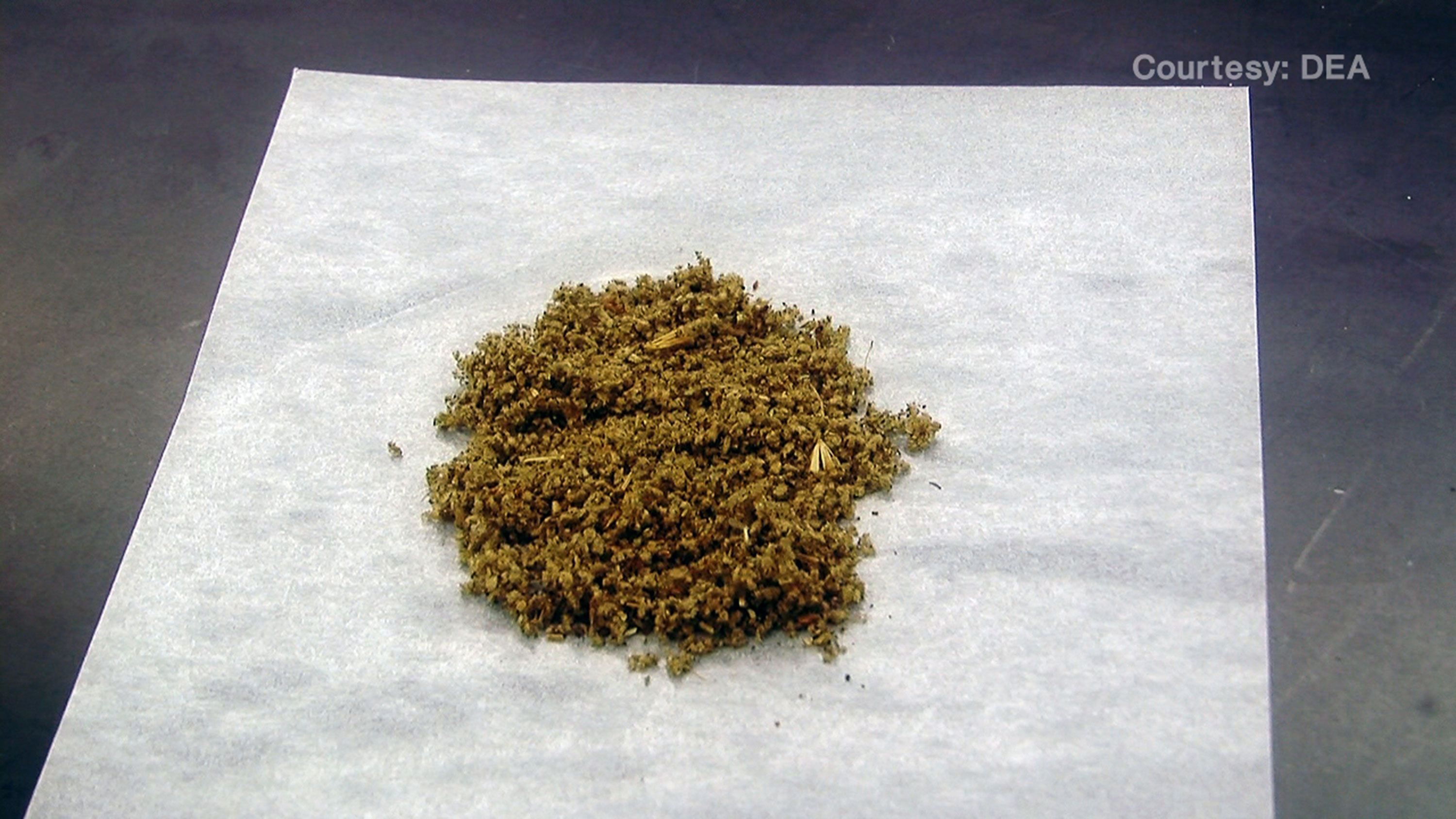 Weed laced with salvia
