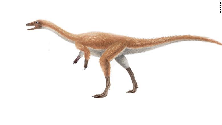 180823170110-02-alvarezsaur-ancient-finds-exlarge-169.jpg