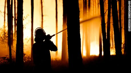 A firefighter in action during the forest fire on Thursday.