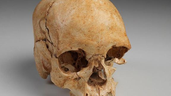 """The skull of """"Luzia"""" was believed to be more than 11,000 years old."""