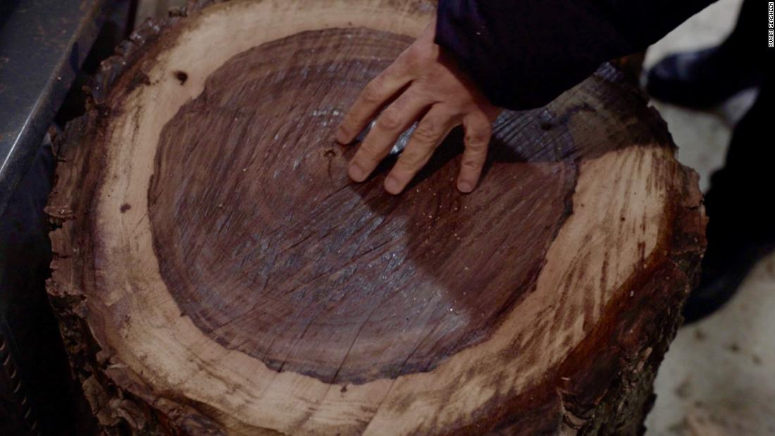 This huge walnut log, harvested from mature forests in the west of Iran, will be used to make a tonbak drum. First it must be dried out for up to eight months.