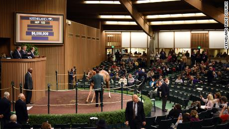 More than $300M is expected to be turned over at Keeneland during the 13-day yearling sale.