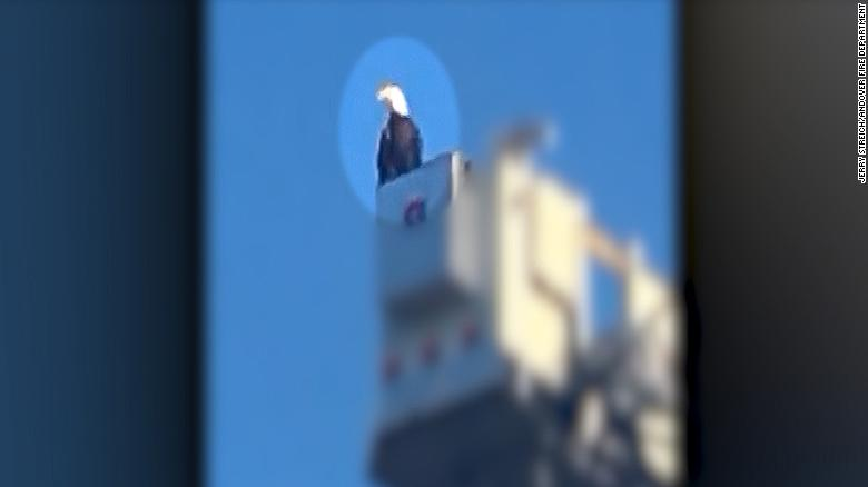 Eagle lands on top of 9/11 tribute - CNN Video on