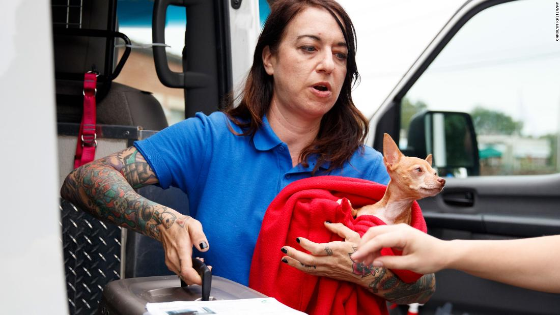 Laura Gretch holds Frances, a Chihuahua mix, as she helps unload cats and dogs arriving at the Humane Rescue Alliance in Washington from Norfolk, Virginia, on September 11.